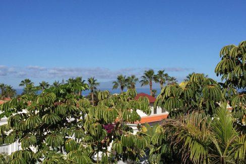 1134 Corazones de Palm Mar (6)